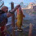 Assassin's Creed Valhalla Fish
