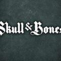 Skull & Bones Videos