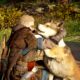 Assassin's Creed Valhalla Pets