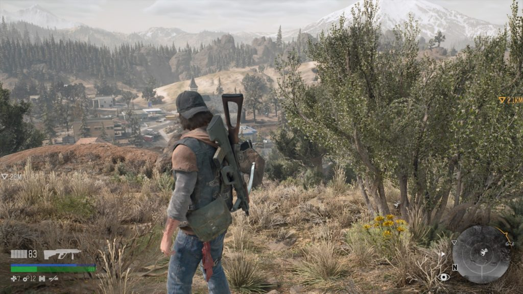 Where to Find Agoseris in Days Gone