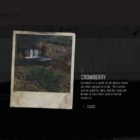 Days Gone Crowberry Herbology Collectible Location Guide