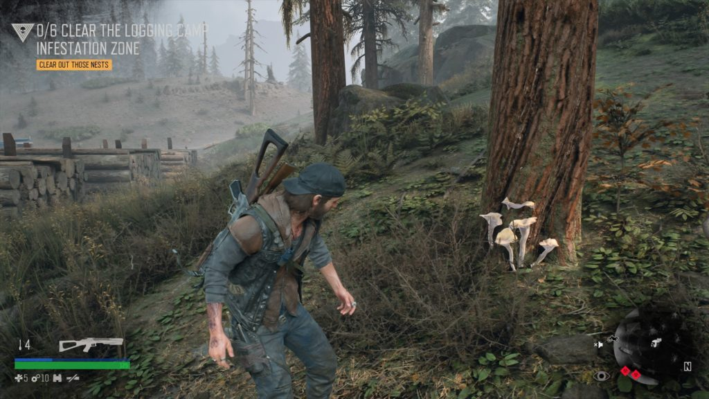 Where to Find Horn of Plenty in Days Gone