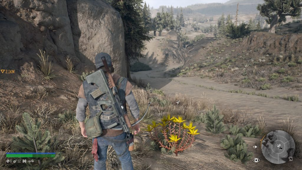 Where to Find Stonecrop in Days Gone