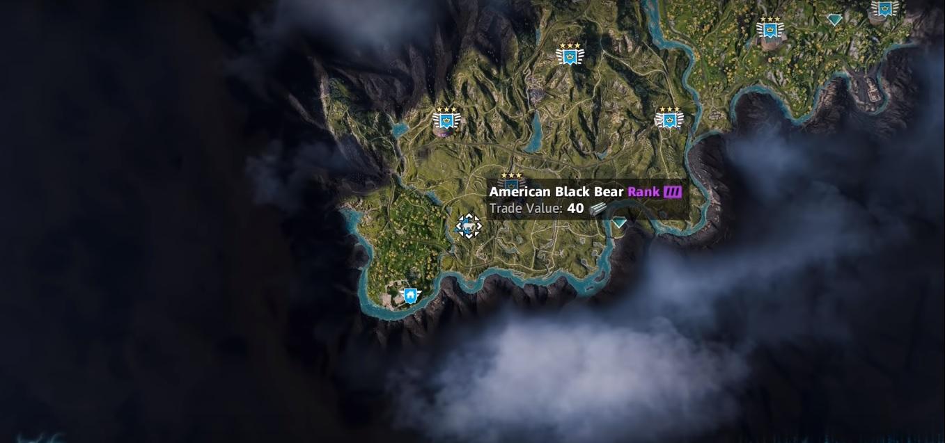 Black Bear | Far Cry New Dawn | Location, Hunting Spot, Skin