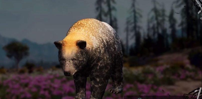 Far Cry: New Dawn Black Bear Hunting Location