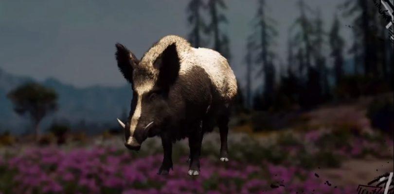 Far Cry: New Dawn Boar Hunting Location