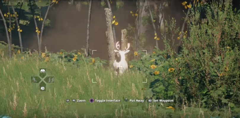 Far Cry: New Dawn Deer Hunting Location