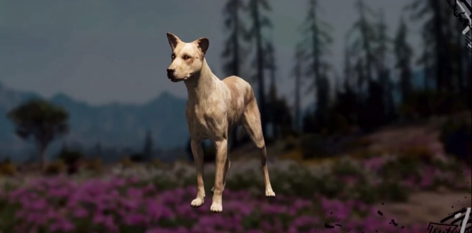 Wild Dog Far Cry New Dawn Location Hunting Spot Skin Value
