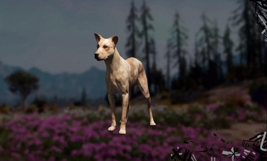Wild Dog Far Cry New Dawn Location Hunting Spot Skin Value