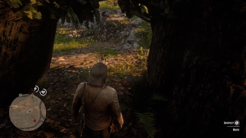 Red Dead Redemption 2 American Dreams Wiki Guide 3