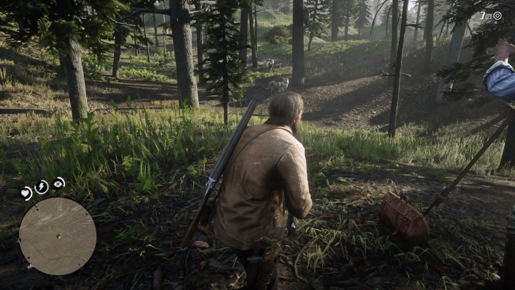 Red Dead Redemption 2 Arcadia for Amateurs Wiki Guide 2