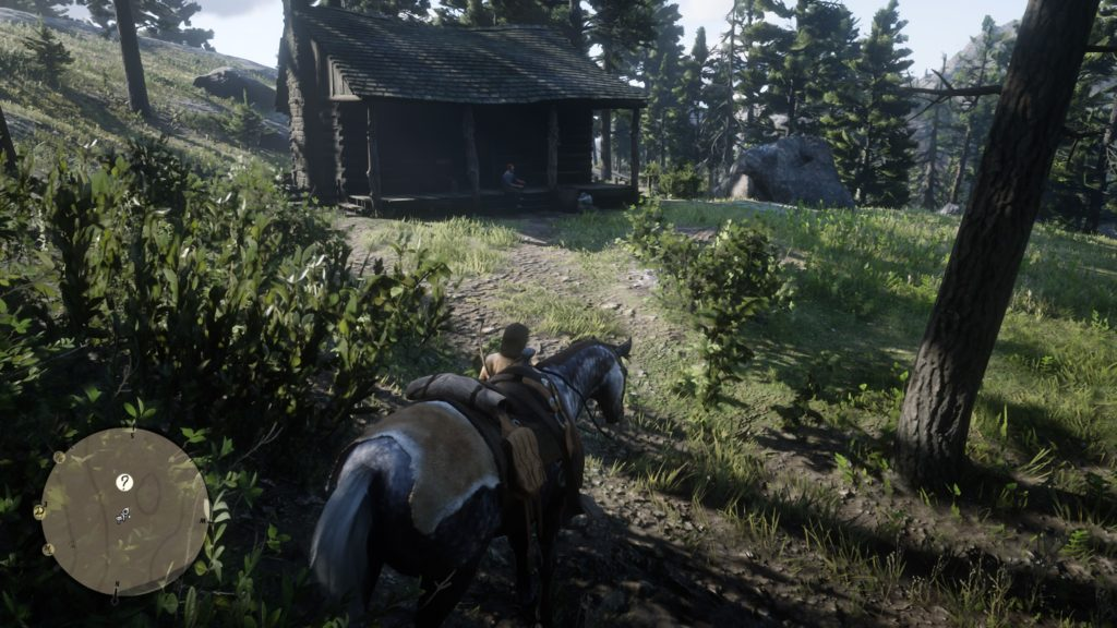 Red Dead Redemption 2 Geology for Beginners Wiki Guide 1