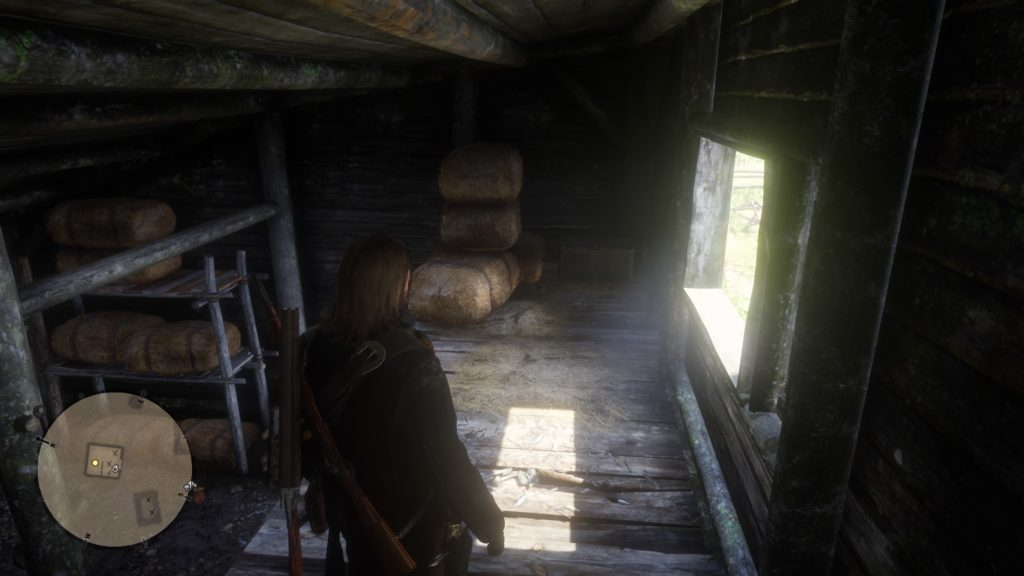 RDR2 Home Robberies Guide 4