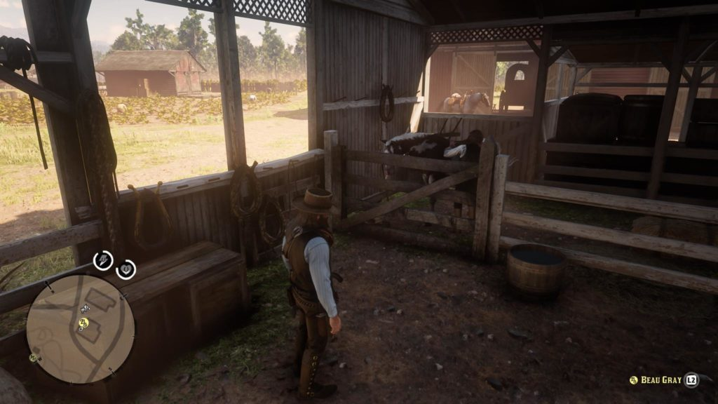 Red Dead Redemption 2 The Course of True Love Wiki Guide 6