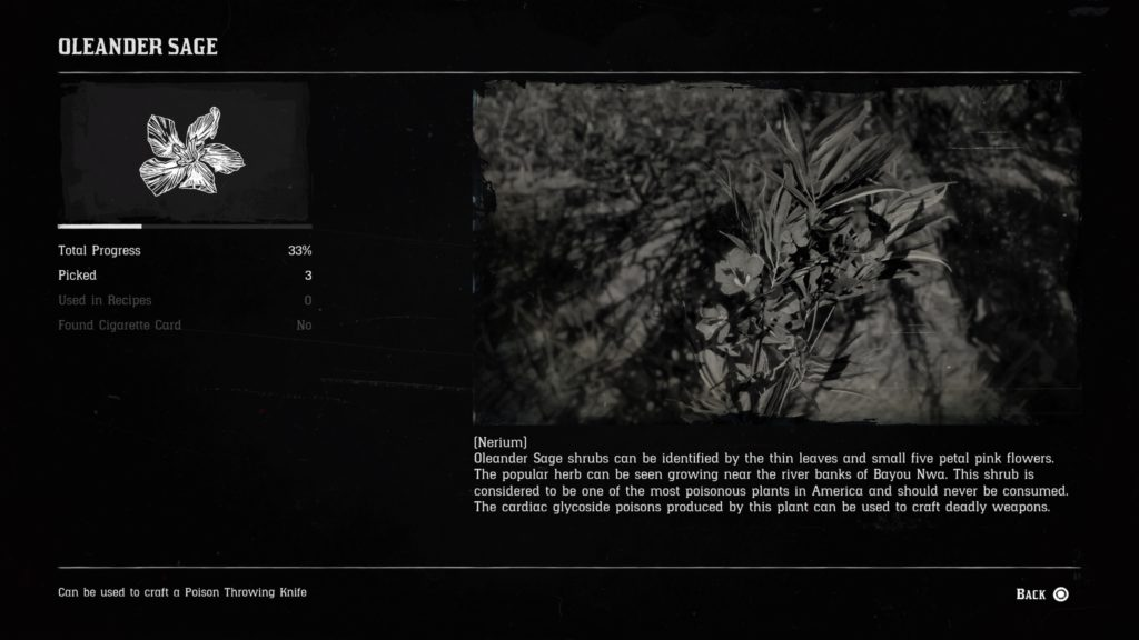 RDR2 All Companion Item Requests Wiki Guide