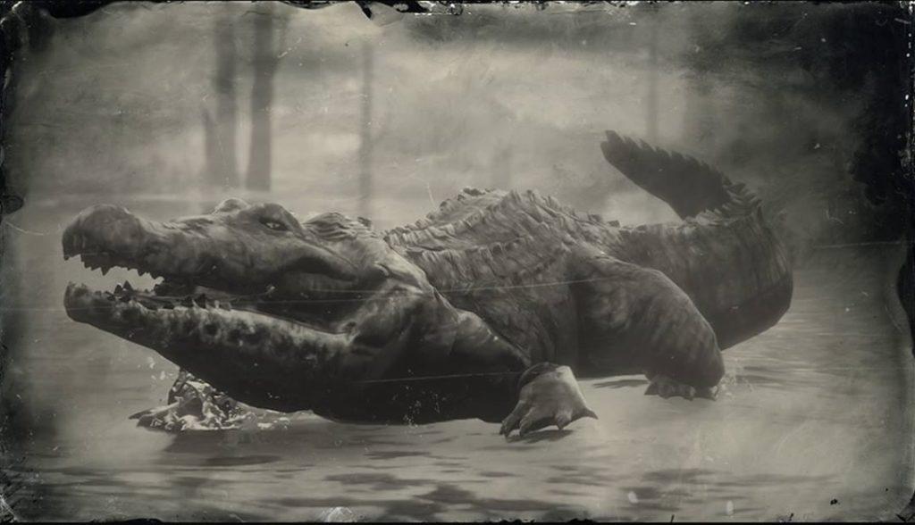 RDR2 American Alligator