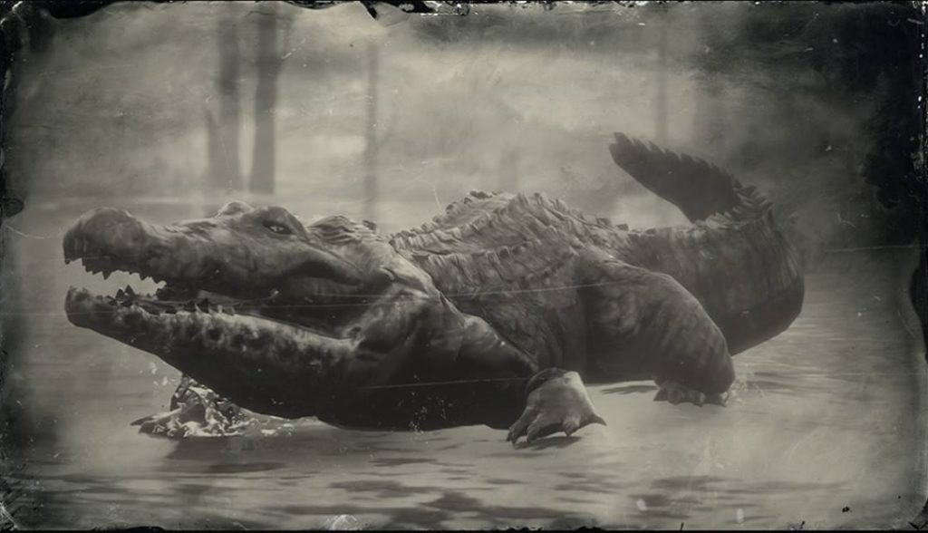 American Alligator | Red Dead Redemption 2 | Location