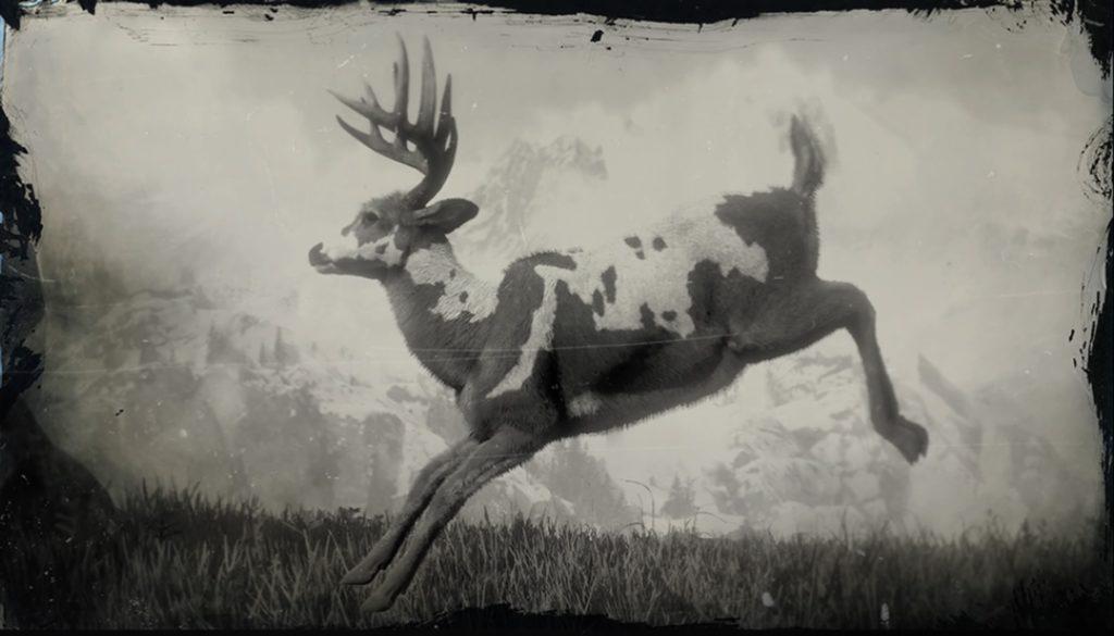 RDR2 Legendary Buck