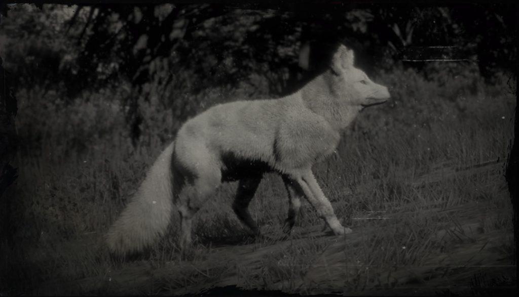 RDR2 Legendary Fox