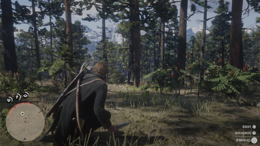 Red Dead Redemption 2 Paying a Social Call Wiki Guide 2