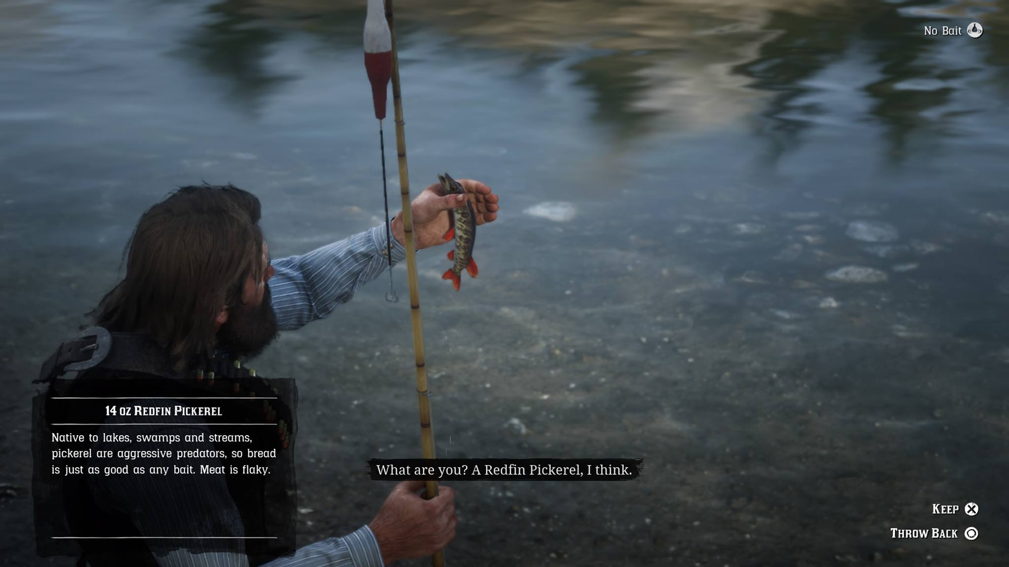 Redfin Pickerel | Red Dead Redemption 2 | Location, Bait