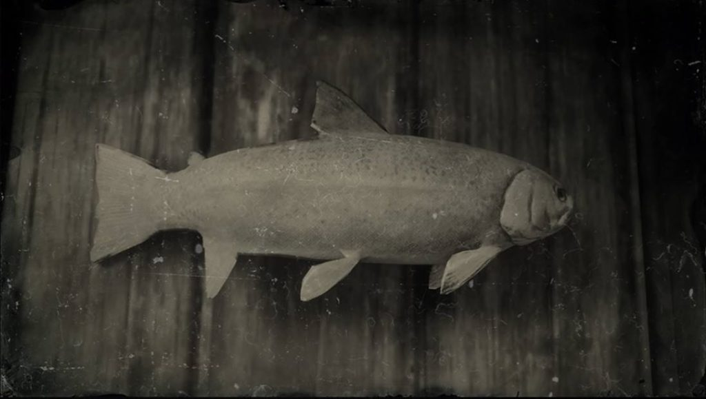 RDR2 Steelhead Trout
